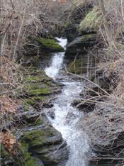 Waterfall-and-moss
