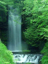 Ireland_110_bg_061602