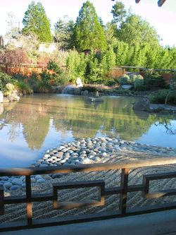 Osmosis-garden