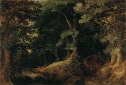Gillis-van-Coninxloo-Forest-Landscape-1598